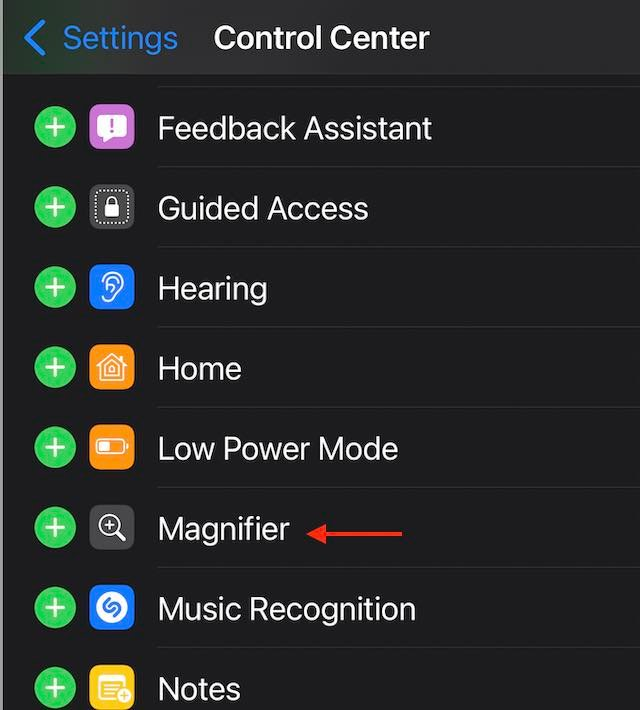 Add Magnifier shortcut to control center