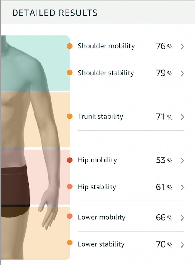 Movement health detailed scores by body region