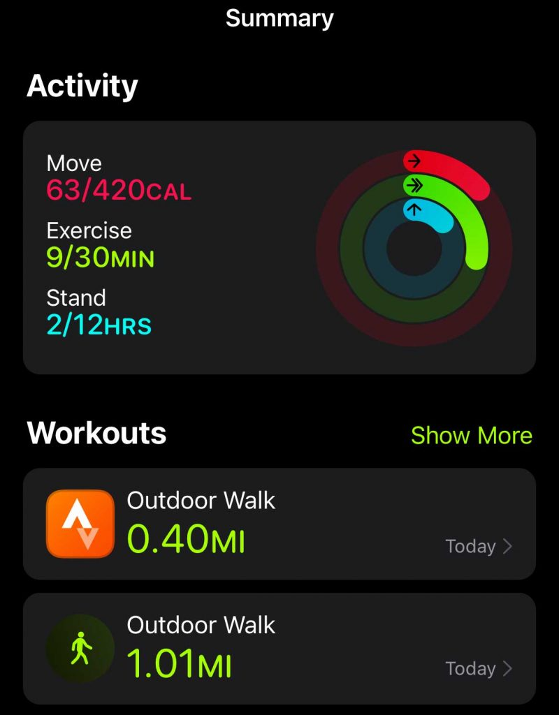 Apple iPhone activity rings shows data from Workout app and Strava
