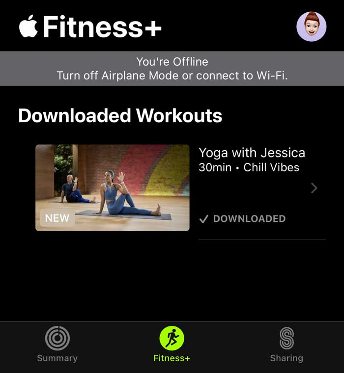 Apple Fitness app confirming you aren't online and showing downloaded Apple Fitness+ classes only