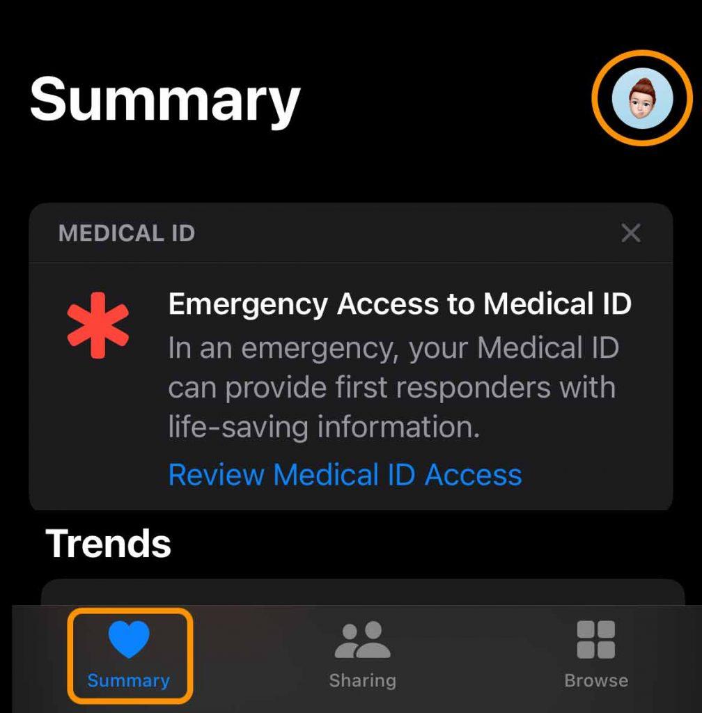 Apple Health Summary and account profile