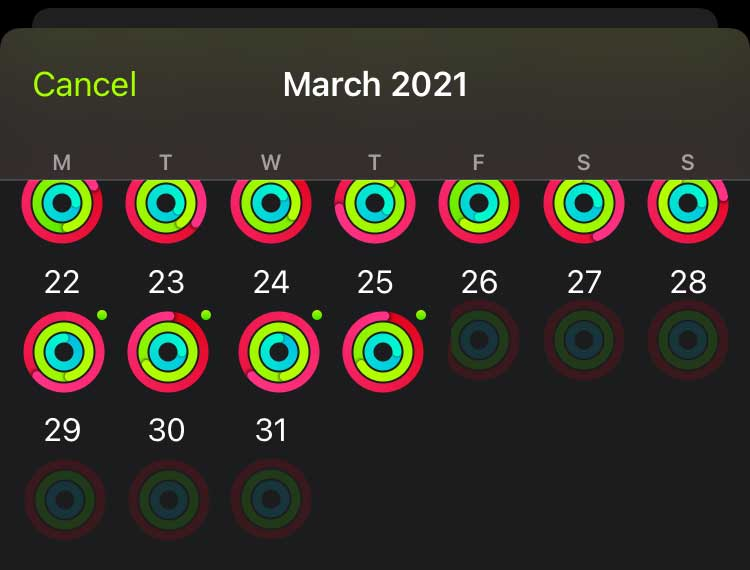 missing activity and blank activity rings on apple watch
