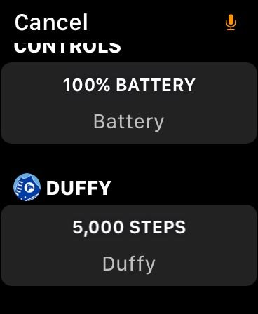 Duffy pedometer complication for Apple Watch