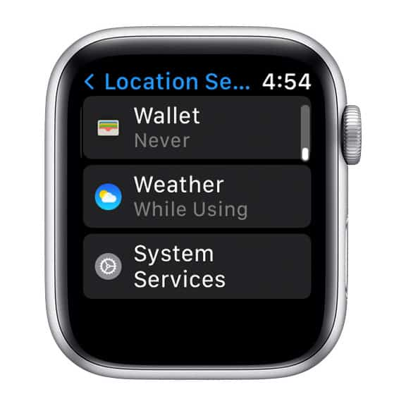 system services on Apple Watch