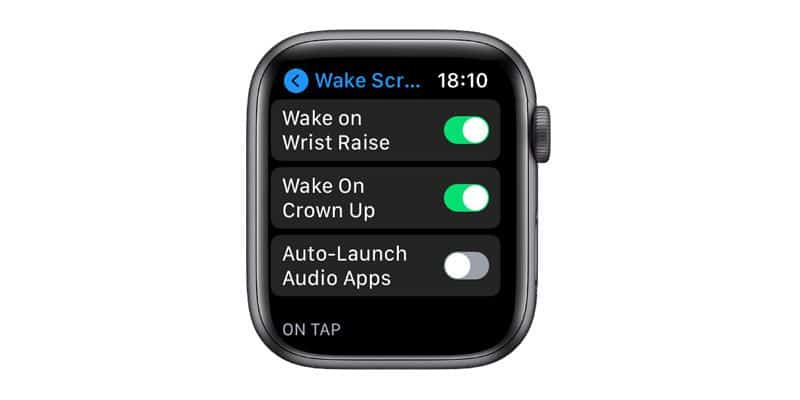 wake screen options on Apple Watch in Settings
