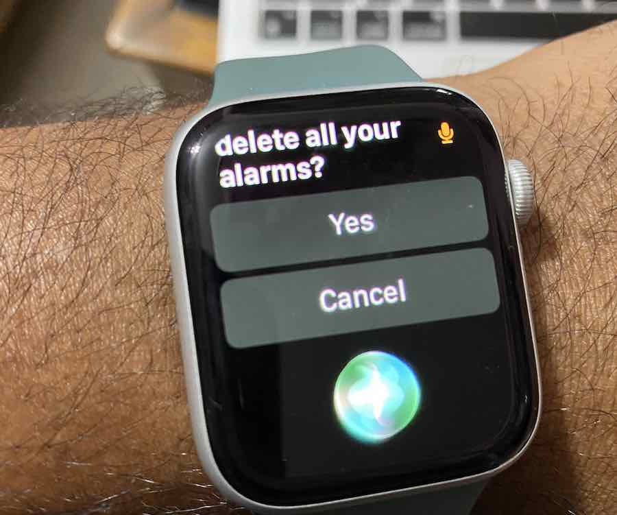 Delete All Apple Watch alarms and reset