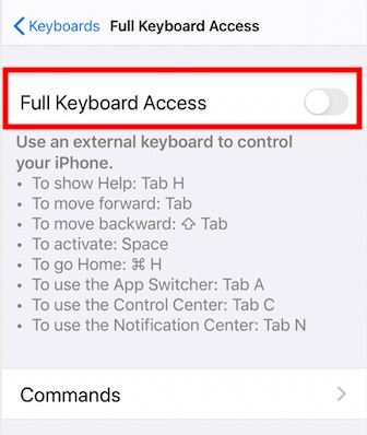 Disable full keyboard access to prevent Activity app crashing