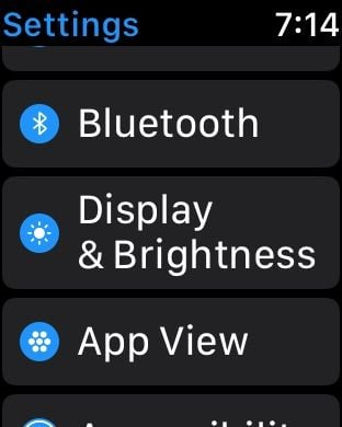 Display and brightness setting on Apple Watch