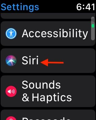 Enable Siri for Apple Watch workouts