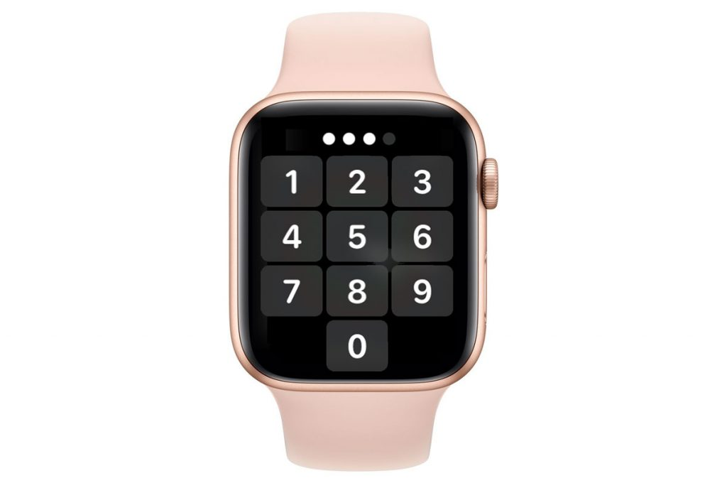 type in your passcode on your apple watch