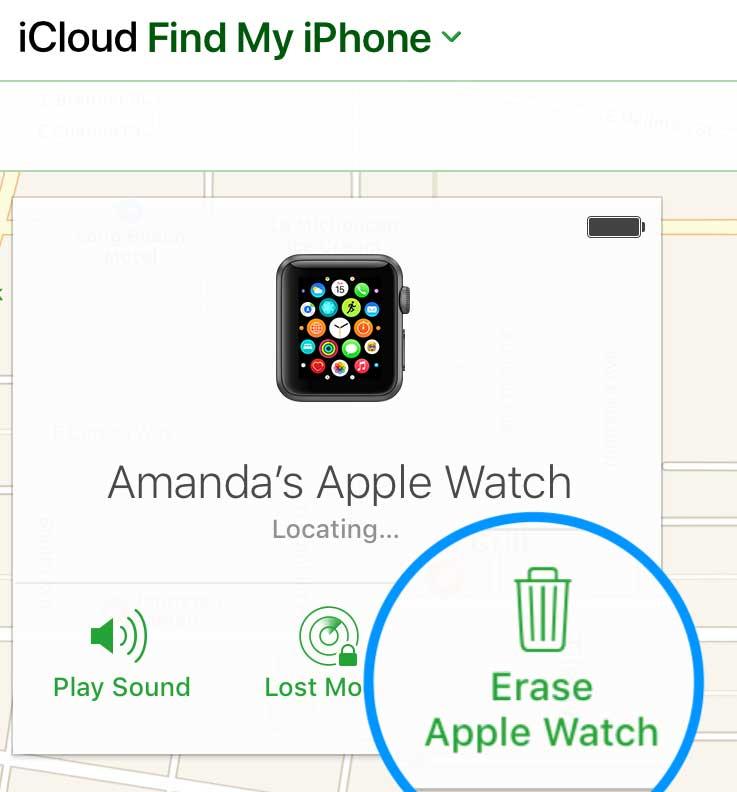 iCloud Find My app erase a device