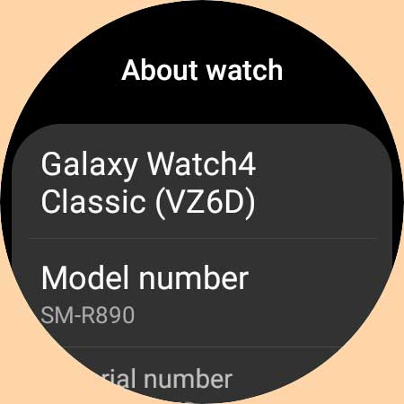 Galaxy watch 4 serial and model number