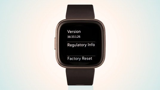 Fitbit serial number on smart watches under regulatory informations