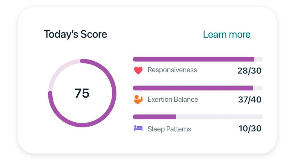 stress score Fitbit app