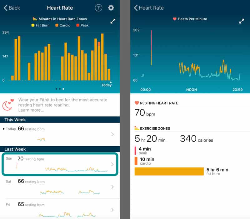 heart rate daily details in Fitbit app