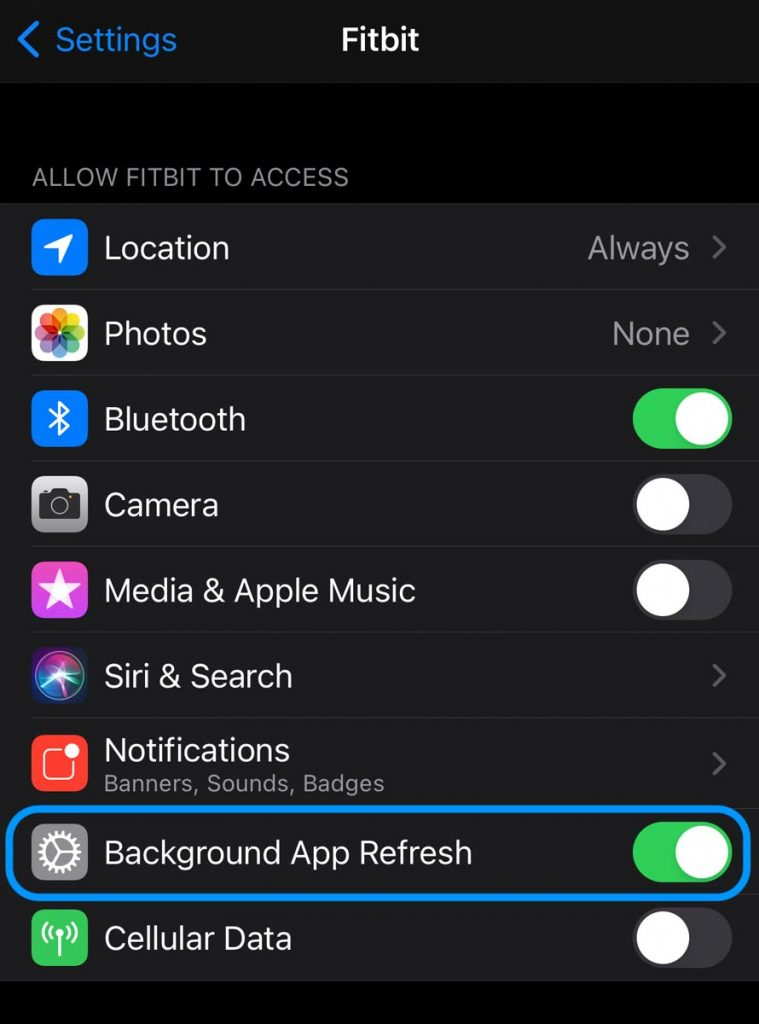 Allow Fitbit app to run in the background on Apple iPhone and iPad