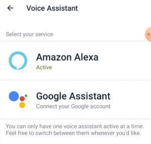 Fitbit google assistant setup