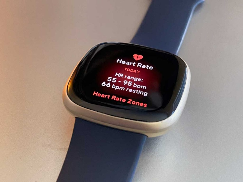 all your heart rate stats on Fitbit