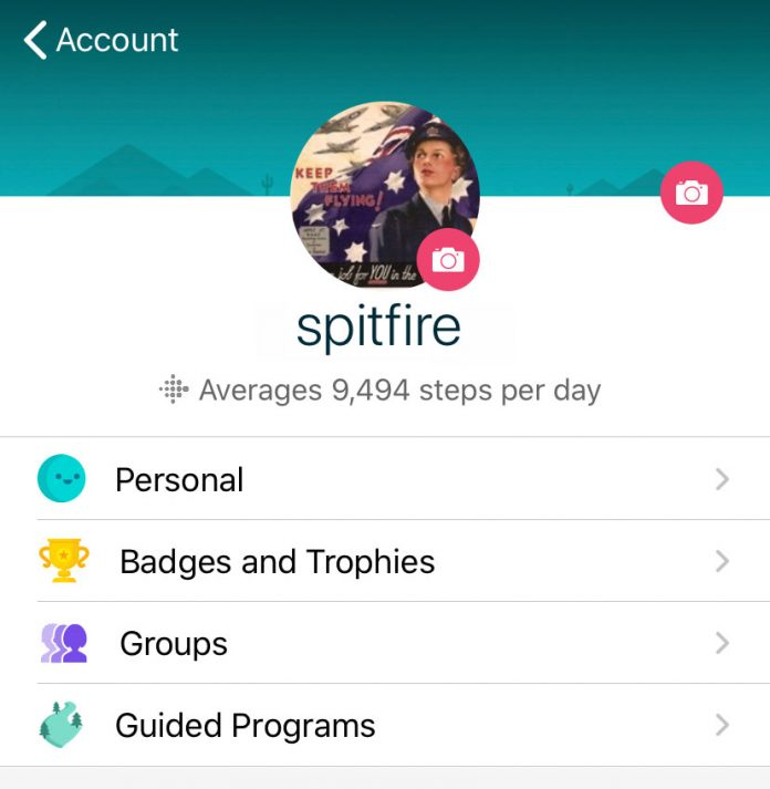 How to find, set, or change your Fitbit username, nickname, and ID