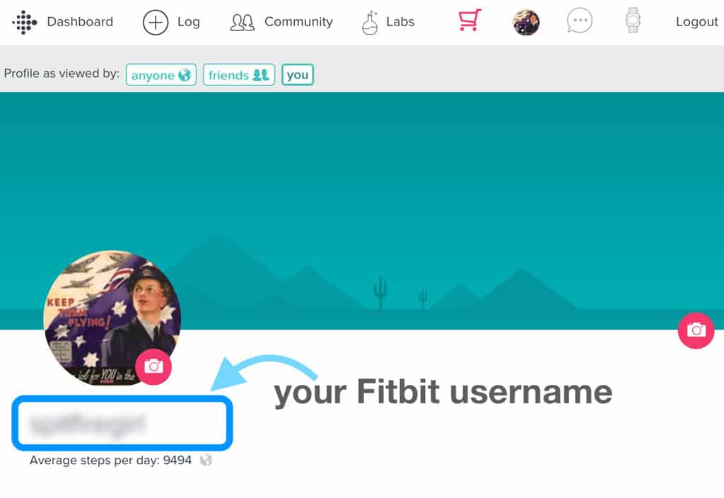 your fitbit username on the fitbit website account settings