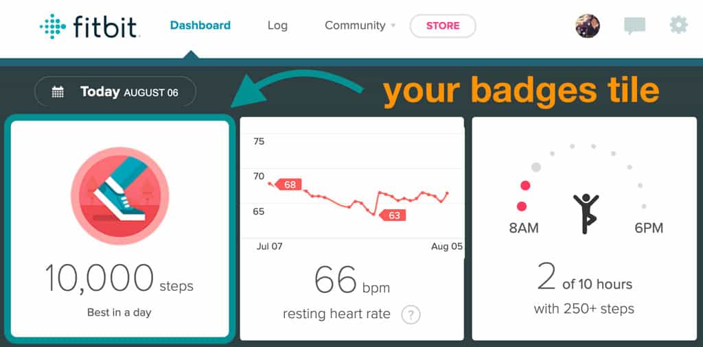 Fitbit badges on Fitbit website dashboard