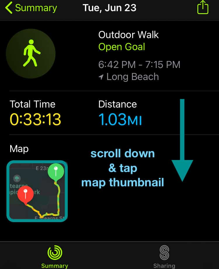 Apple Watch workout app map route thumbnail in Fitness or Activity app iPhone