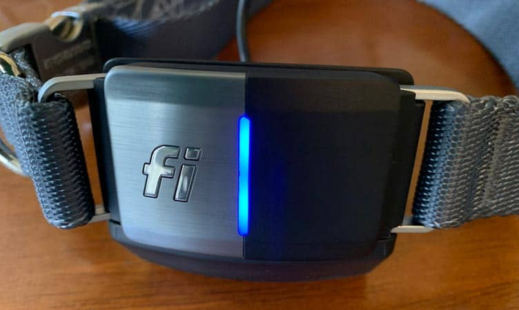 Fully charged Fi smart dog collar on its Fi base station