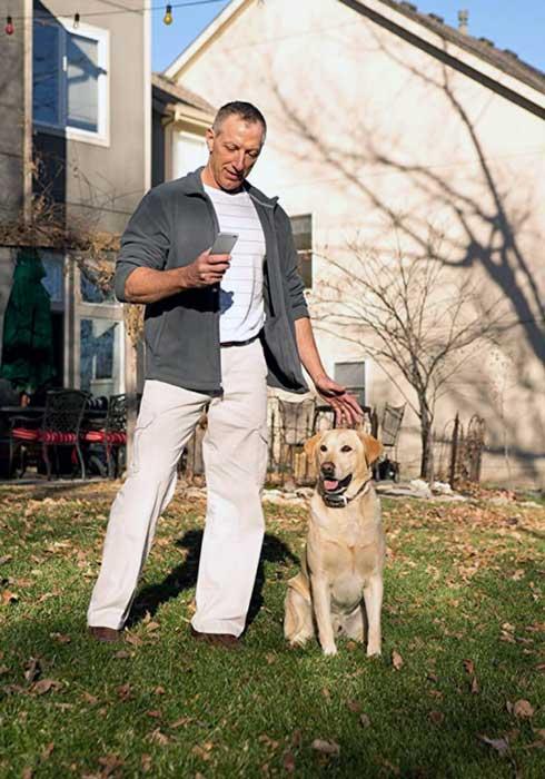 Garmin dog training collar smart
