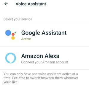 Google Assistant is active for Fitbit inside the Fitbit app