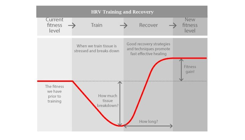 HRV Training and Recovery