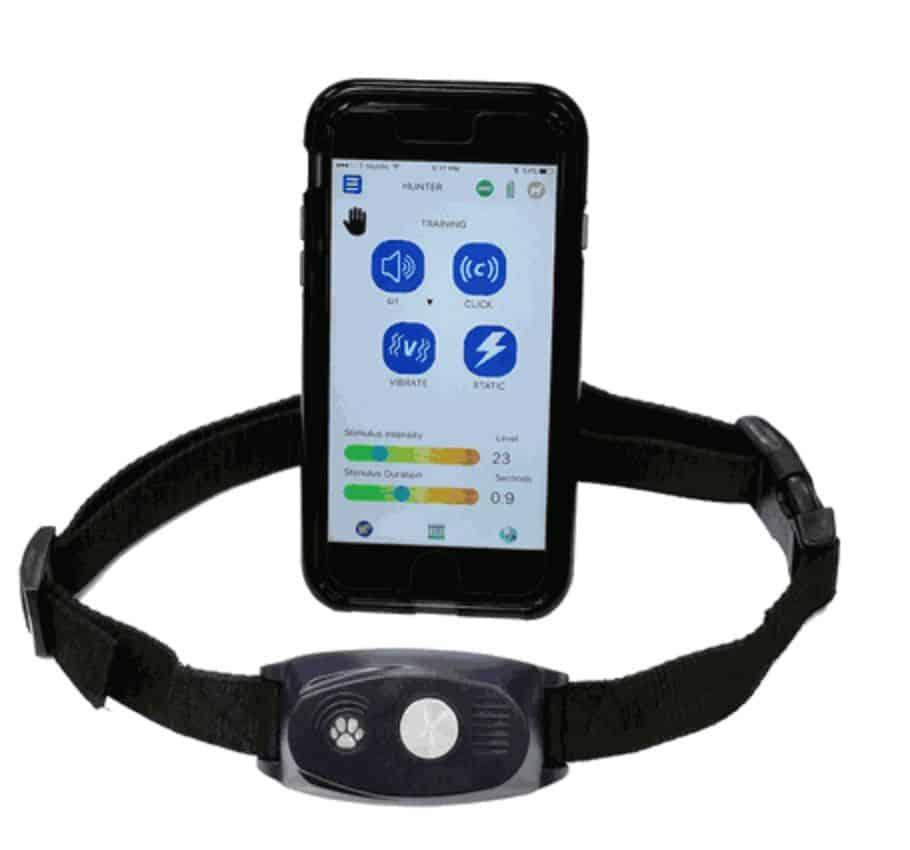 High Tech Pet BF-30 Bluefang Remote Training Collar
