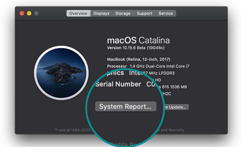 System Report data on Mac
