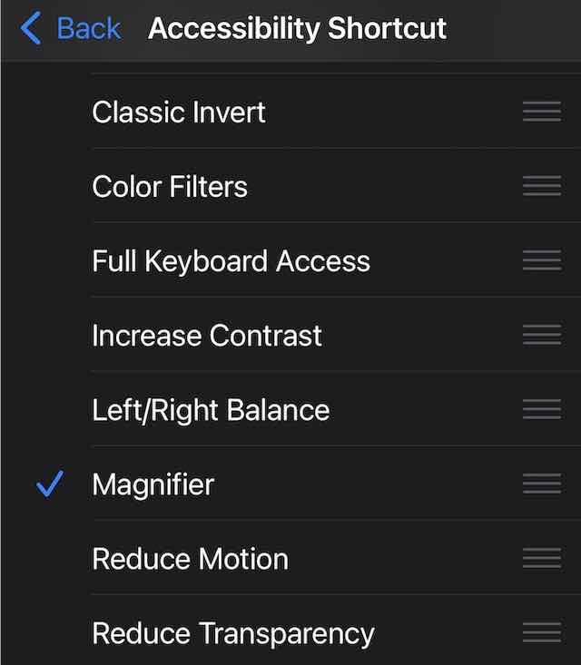 Magnifier Shortcut on iOS 15 and iPadOS 15