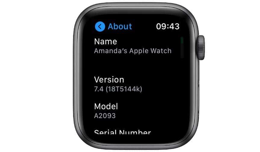 Apple watch model number in Watch settings app