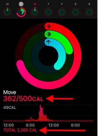 Move vs total calories on Apple Watch