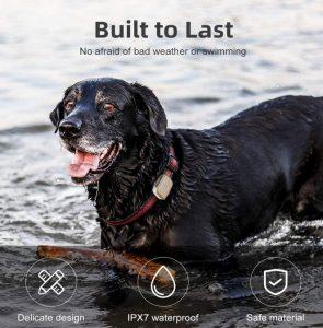 Best pet GPS