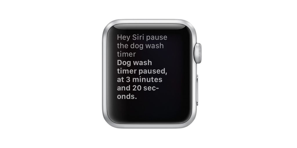 apple watch pause a timer