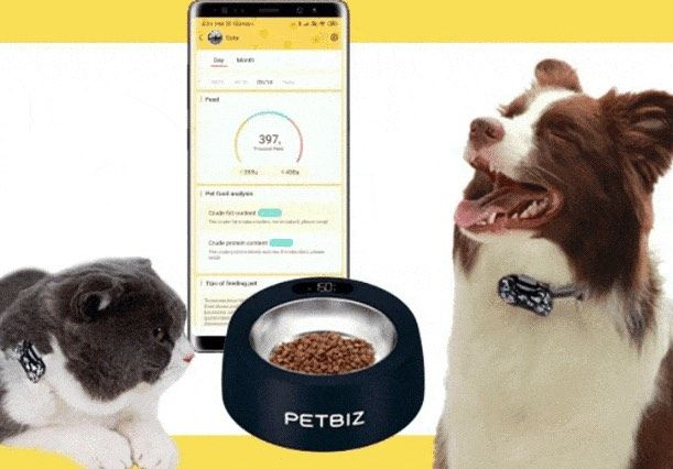 Petbiz smart bowl and wearable