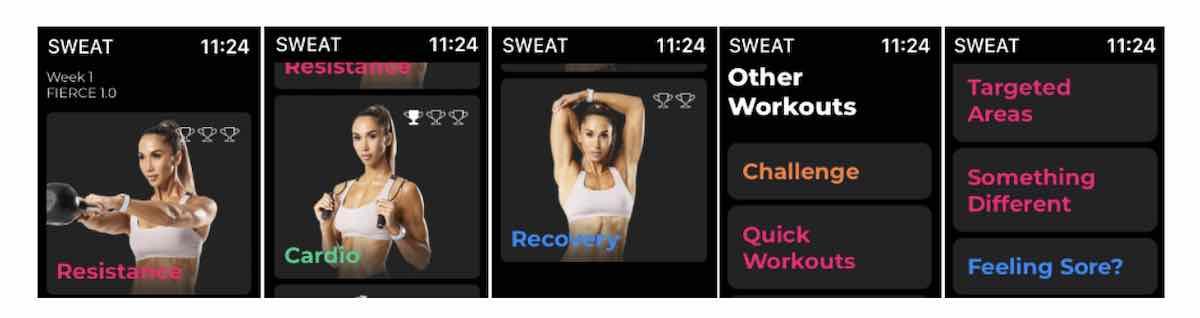 Sweat Stand alone weight training on Apple Watch