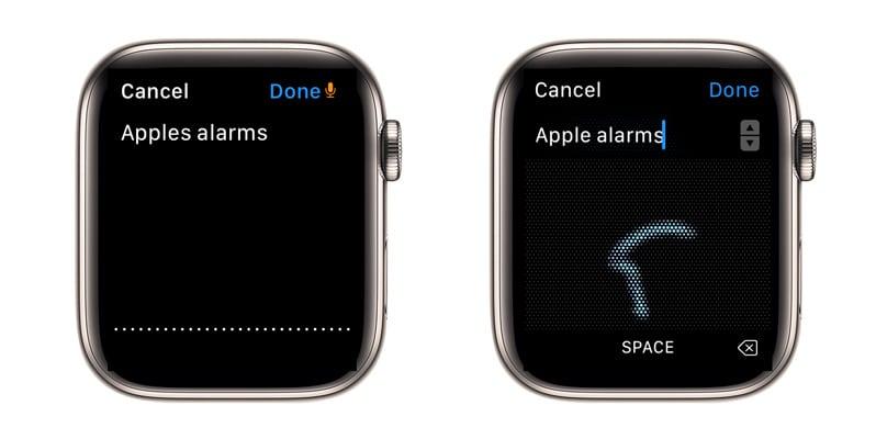 find an app using the Apple Watch App Store app