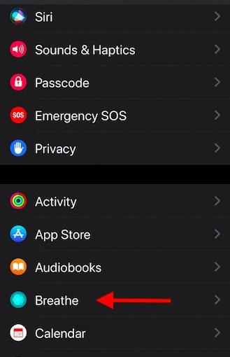 Set default session Time on Apple Watch Breathe app