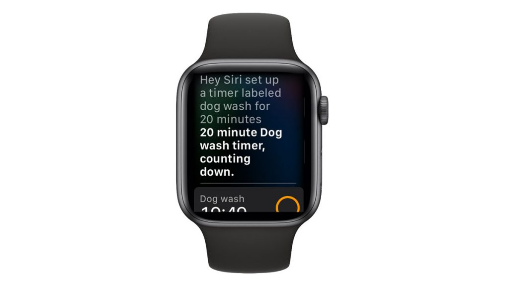 Use Siri to create a timer on your apple watch