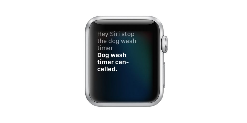 use Siri to cancel or stop a timer on Apple watch