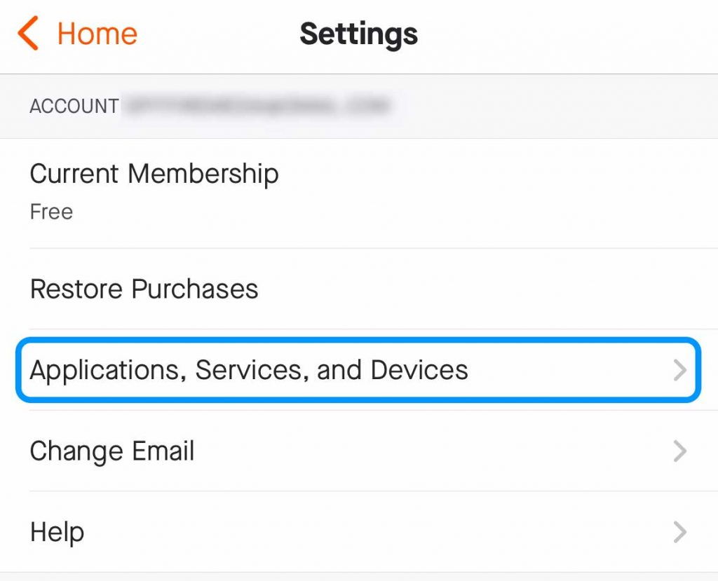 settings for application, services, and devices in Strava app