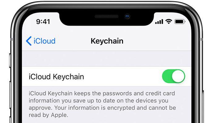 turn on iCloud Keychain for iPad and iPhone