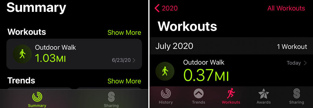fitness app and activity app workouts summary