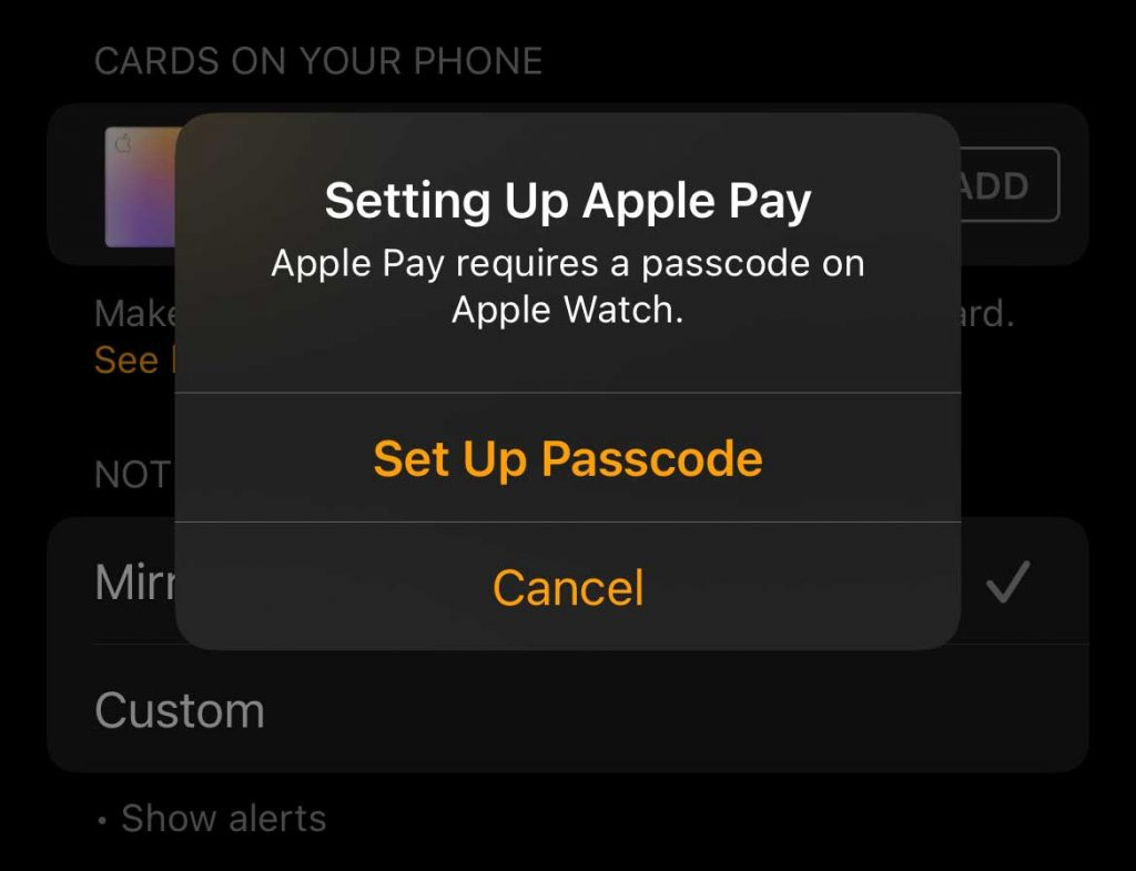 set up passcode on Apple Watch to use Apple Pay