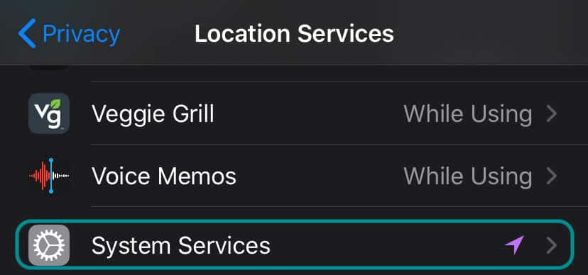 iPhone system services under privacy and location services