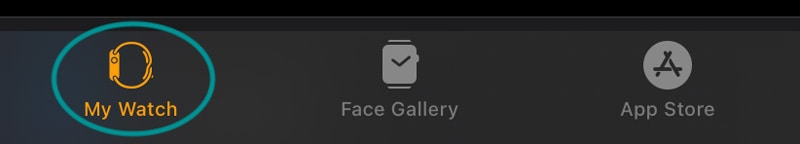 My Watch app tab on iPhone for Apple Watch