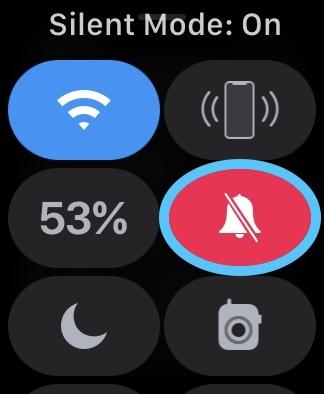 apple watch silent mode on